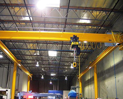 LDP type partial hoist overhead crane